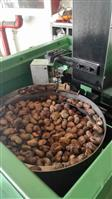 SS21 Automatic Cashew Shelling Machine